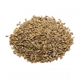 SpiceUp Whole Aniseed 100g